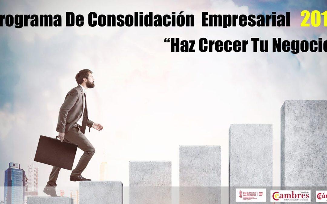 Programa de Planes de consolidación Empresarial 2018 (PCE).
