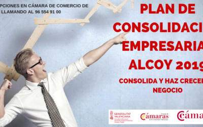 Plan de consolidación Empresarial 2019 (PCE)